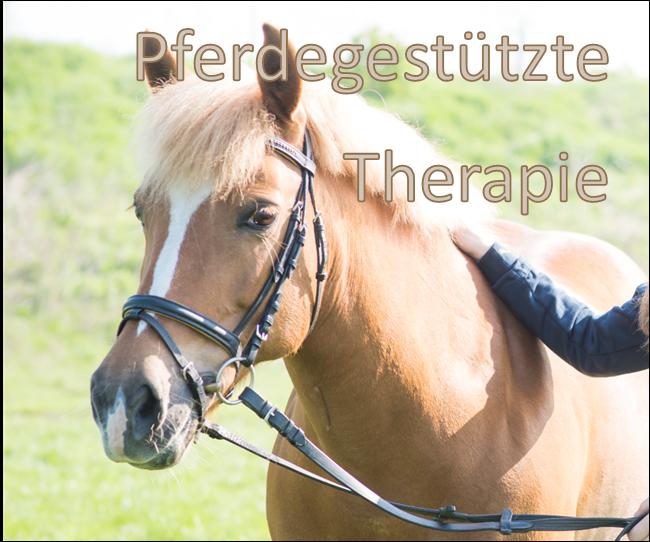 PferdegestützteTherapie_cBarbaraWirl_BirgitRuf